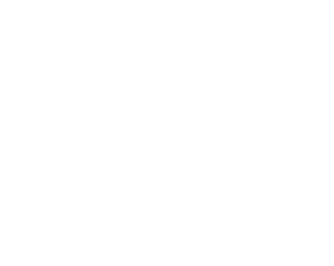 Holmes Graphic Design White Logo